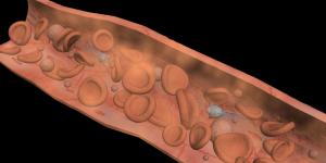 Microrobots en sangre