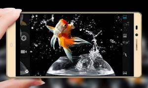 Parece que la cámara se mueve como pez en el agua.