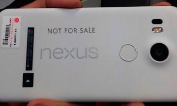 nexus51